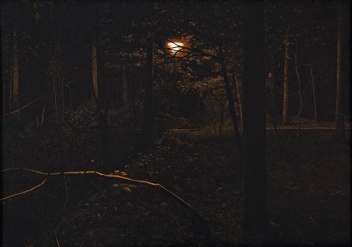 2010  Waldweg110 x 156 cmÖl auf Holz